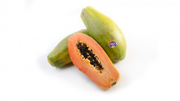 Papaya Riesenpapaya